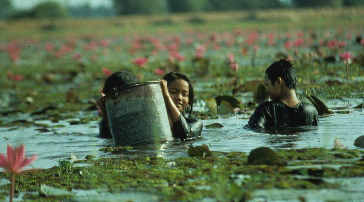 Rice People  (1994)